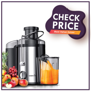EASEHOLD Fruit Juicer Professional Whole Vegetable Extractor 800W Dual Juice Machine-best value juicer